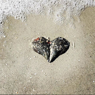 Image of a heart shape found out in the world